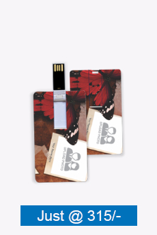 Fly Credit Card Pen Drive